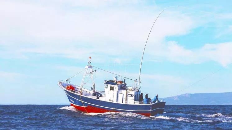 Nachhaltige Fischerei Green Stick
