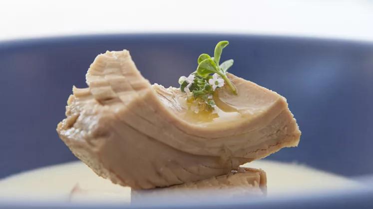 Thunfisch aus der Dose die gesunde Low Carb Ernaehrung