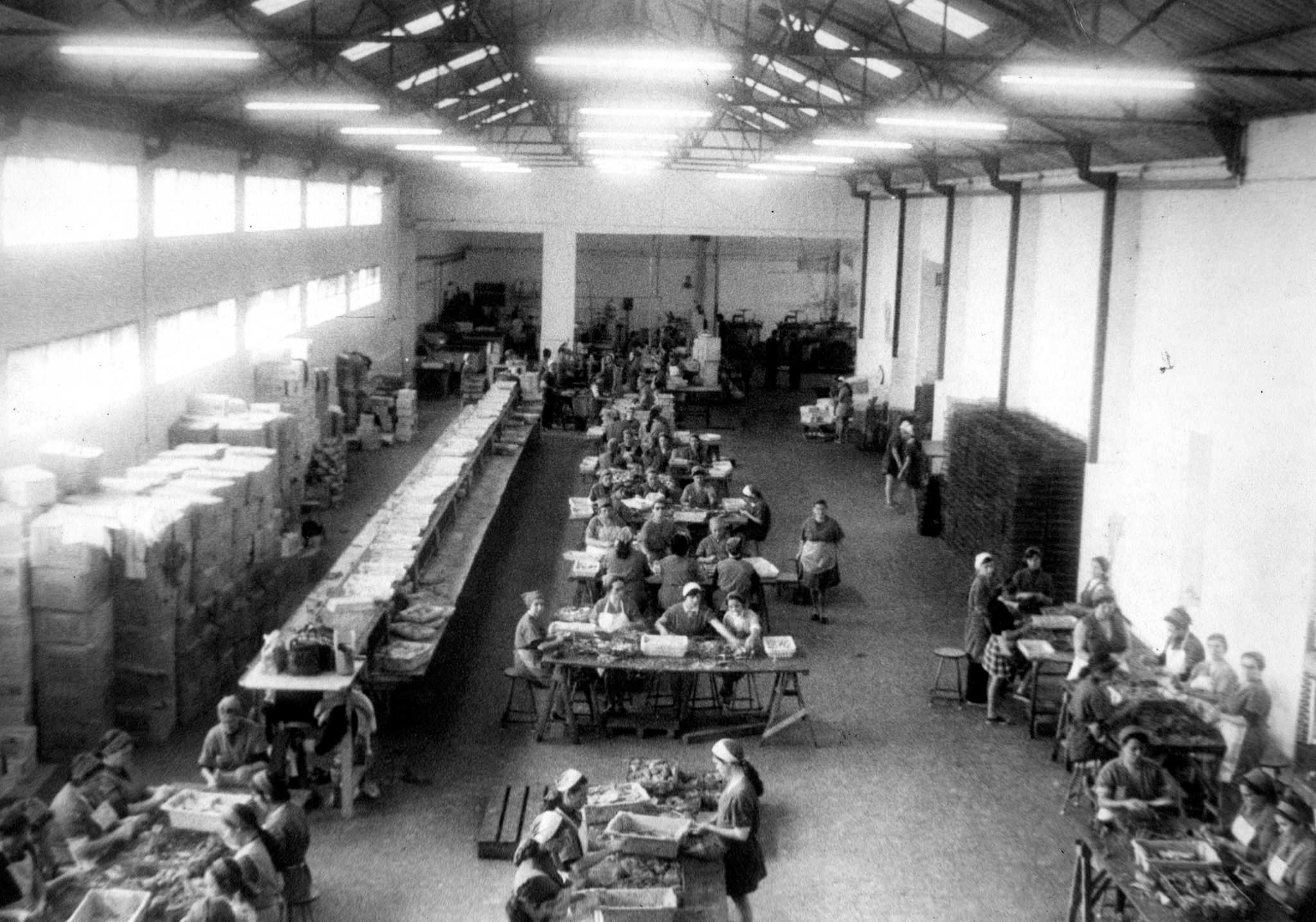 Fischfabrik Conservera de Tarifa vor 110 Jahren