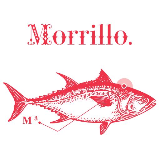 Rueckenfleisch vom roten Thunfisch in Olivenoel