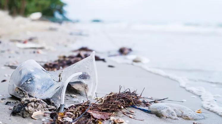 Pflege der Ozeane