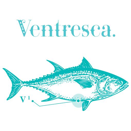 Ventresca Bauchfleisch vom roten Thunfisch in Olivenoel